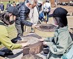 発掘した木に触れる参加者