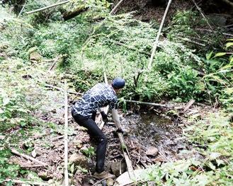伐採した竹を取り除く伊勢原JCのメンバー