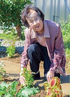 花の手入れをする打田さん