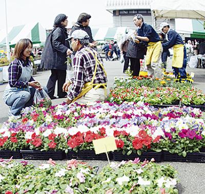 春の園芸まつり