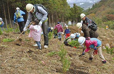 ヒノキ1650本を植林