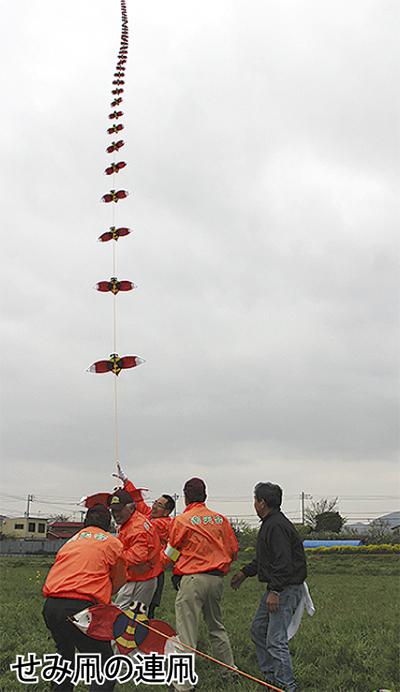 せみ凧で遊ぼう
