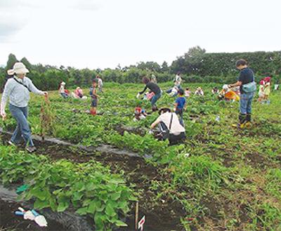 親子で農作業体験