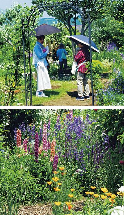 手作りの西洋風庭園