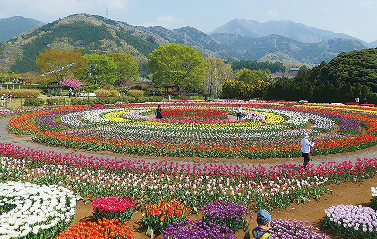 戸川 公園