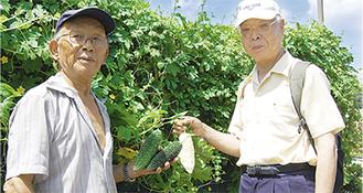ゴーヤを収穫した田中さん(写真左)と川崎会長