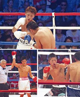 地元での凱旋試合に、揃って勝利した3人。上から時計まわりに、尚弥さん、拓真さん、浩樹さん