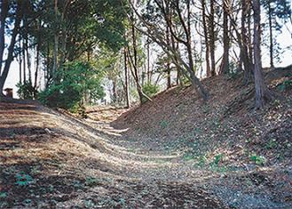 渋谷氏の城跡と伝えられる「早川城跡」