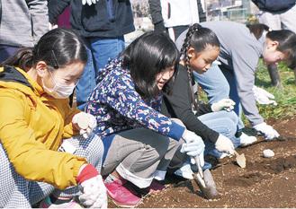 農業体験を通し自然を学ぶ子どもたち