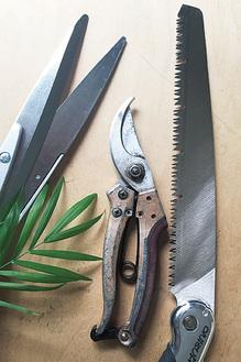 剪定に使用する道具