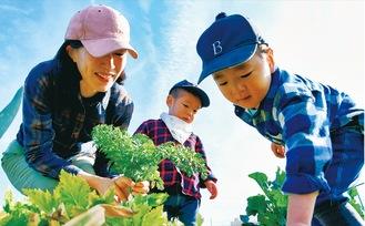 畑で収穫を楽しむ中野さん親子
