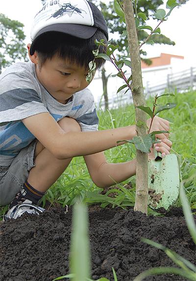 木植えて環境学習