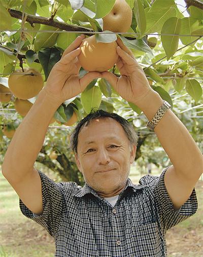 梨品評会で県知事賞