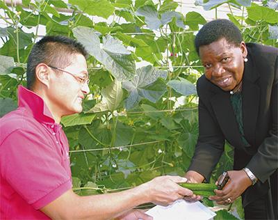 タンザニア大使が農業視察