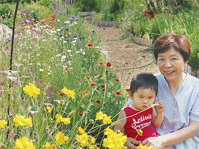四季折々の花が咲く庭