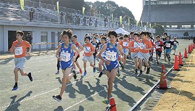 第40回市駅伝競走大会 127チーム健脚競う | 綾瀬 | タウンニュース