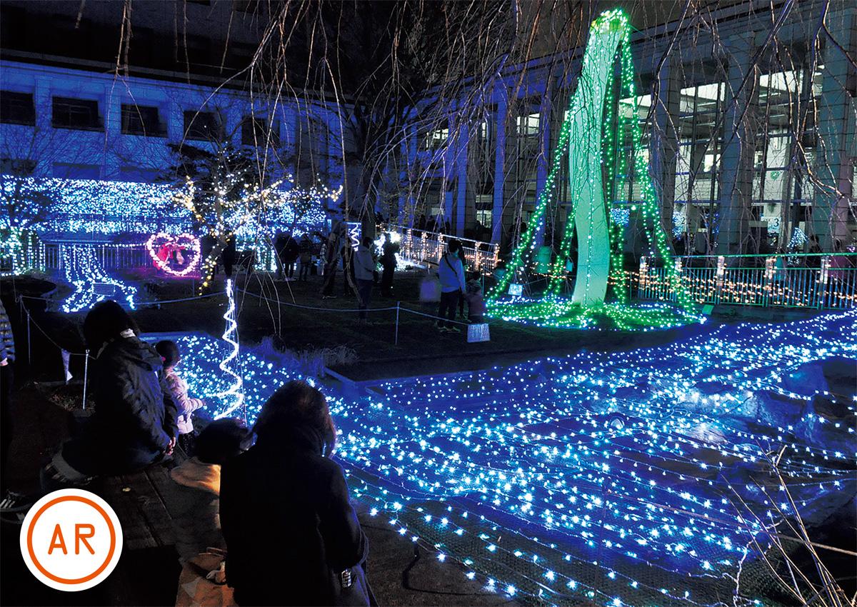 冬空彩るイルミ点灯