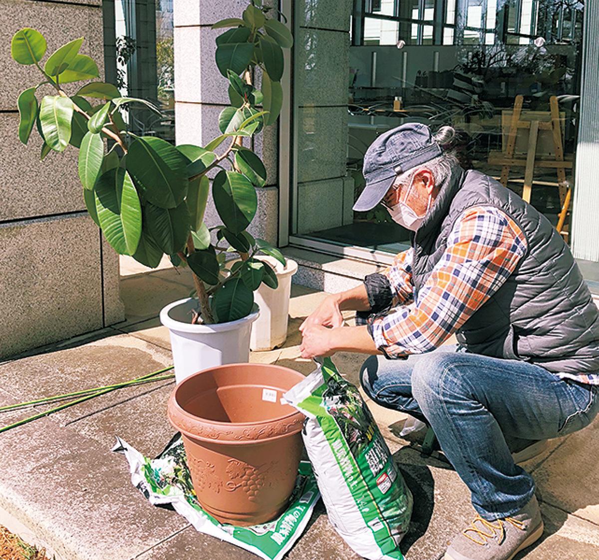 造園家が教えるガーデニングの豆知識