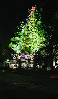 町役場のツリー