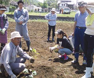 昨年度行われた農作業の様子