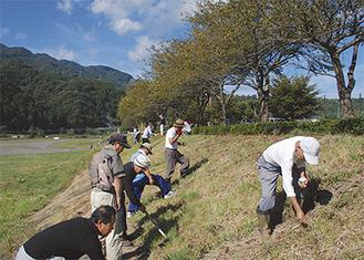 斜面を除草し種をまく会員たち