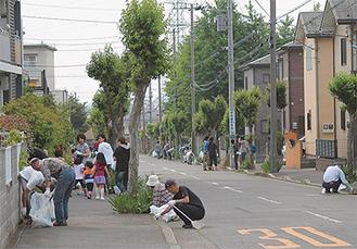 生活道路のごみを集める参加者たち