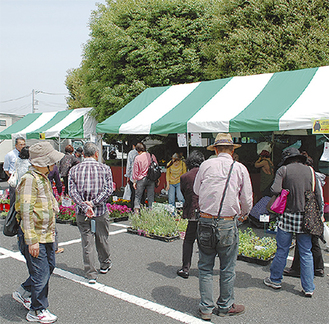 花や野菜の苗を買い求める来場者