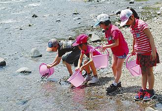 鮎を放流する児童たち