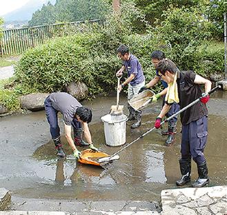 手作業で池を清掃