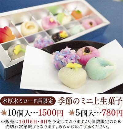 ミニ上生菓子登場