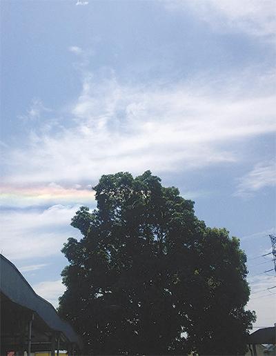 愛川町の空に彩雲を発見