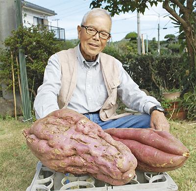 びっくり5kgのサツマイモ