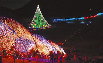 光の祭典 今年も