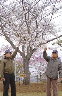 「くらかけ桜」を愛でる天沼会長(右)と佐々木幹雄さん(81)。今年の桜は例年よりも1週間近く開花が早いという(=今月25日撮影)