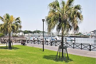 不法係留対策として2007年に設置された深浦ボートパーク