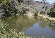 ため池を訪ねて歩いて