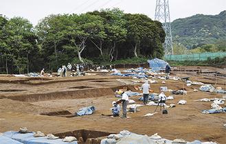 小田和湾を見渡す小高い丘にある調査現場。面積は9,800平方メートル