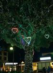 赤や白、青のLEDが木の幹に飾られている(北久里浜商店街)