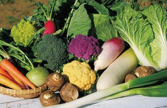 季節の野菜セット「すかなボックス」※写真はイメージ