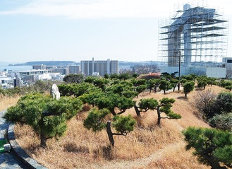 中央公園は東京湾を望む眺望が魅力