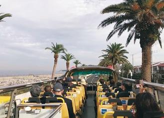オープントップバスの眺め。高所から360度見渡せる