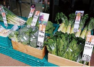 新鮮な三浦半島産野菜がずらり