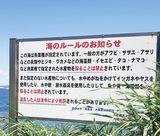 「密漁ダメ」監視強化