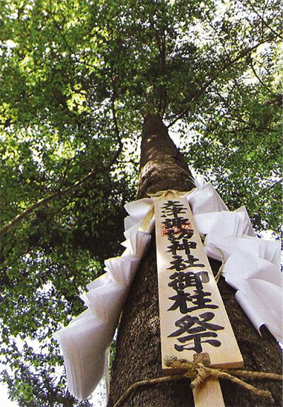 巨木、大津地域を横断