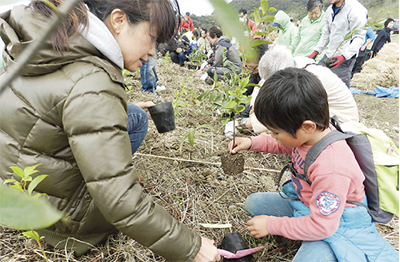 めぐりの森で3千本植樹