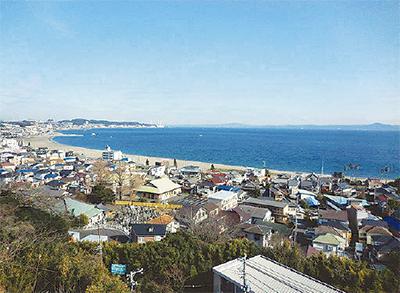 三浦海岸に今夏開所
