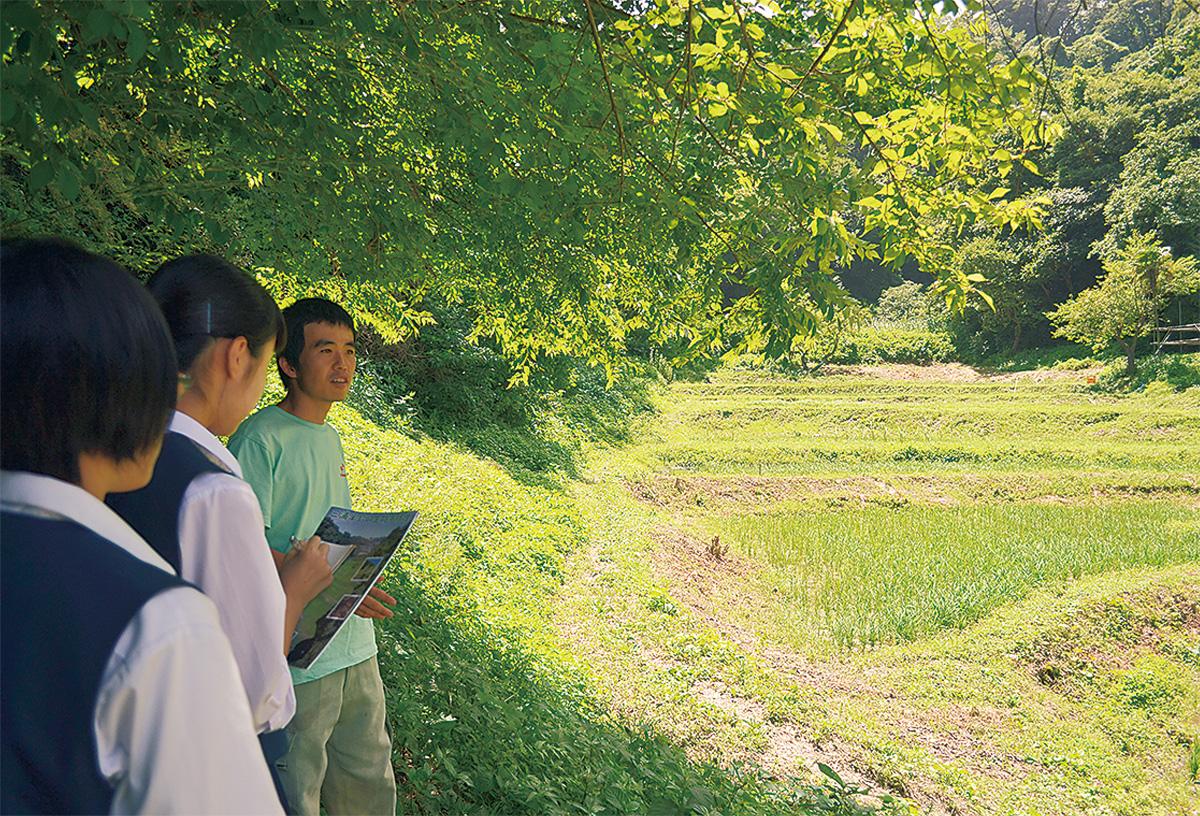 三浦半島の生態系を守る