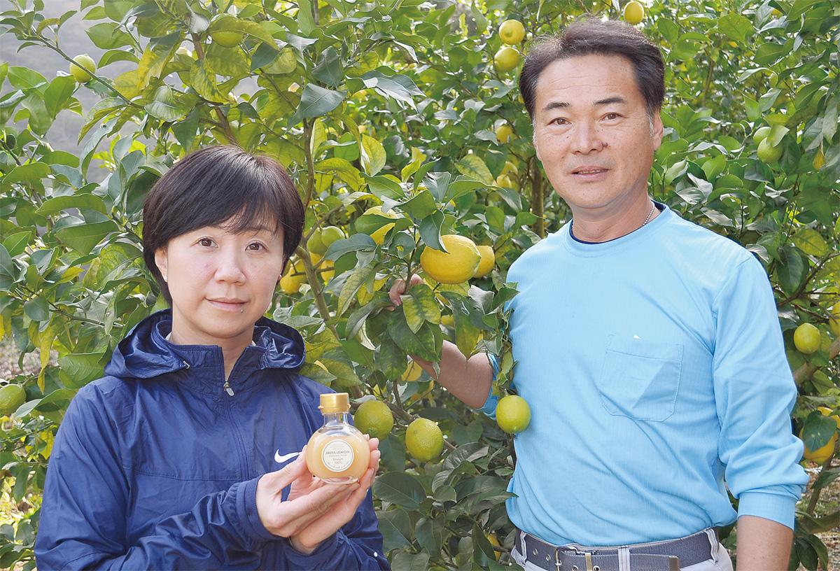 ぎゅぎゅっと「秋谷レモン」