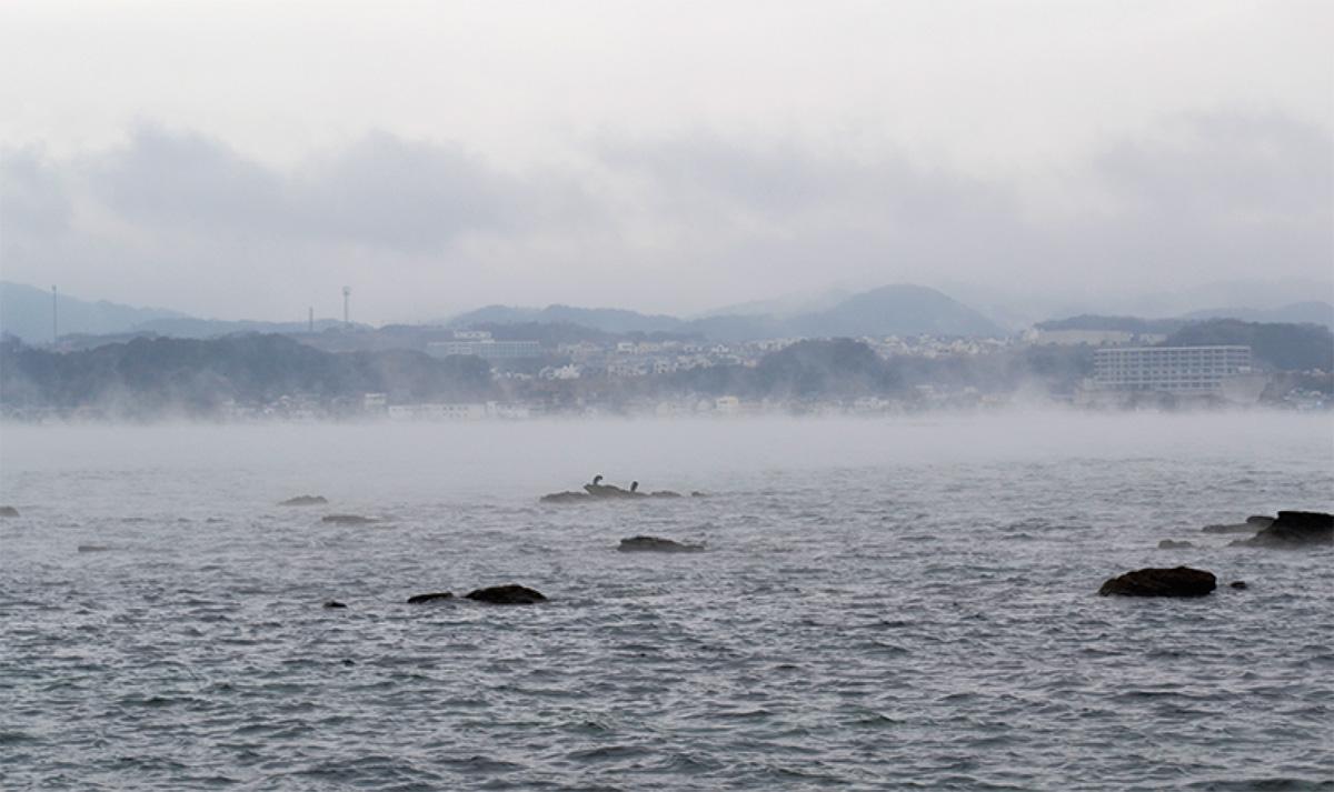 小田和湾で「気嵐」