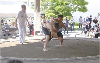ちびっこ力士の戦いに沸いた三浦場所(昨年大会)